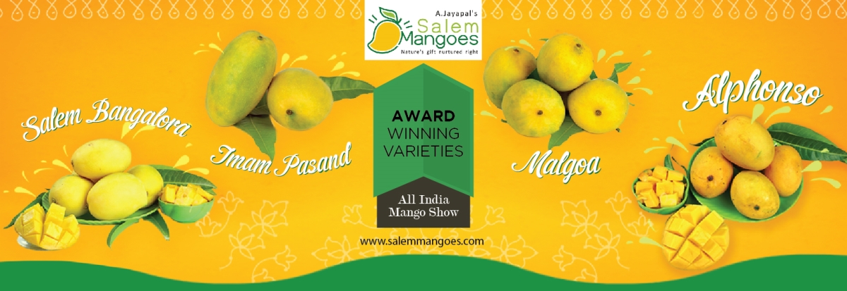 Award Winning Mangoes  All India Mango Show